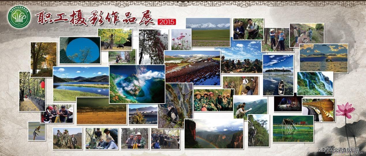 """我院2015年度""""中国梦.劳动美""""职工摄影比赛圆满结束"""